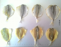 Dried Trevally